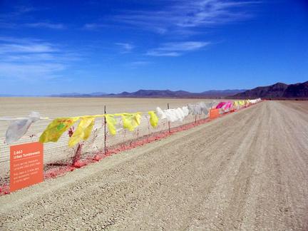 2663 Urban Tumbleweeds at Burning Man