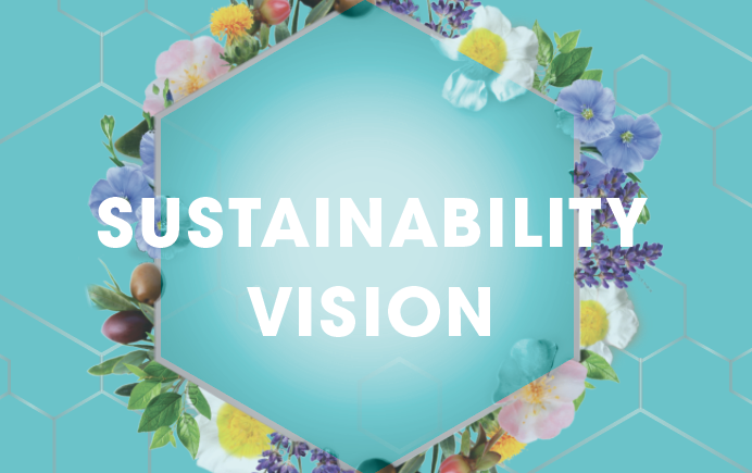 Our Vision for Sustainability